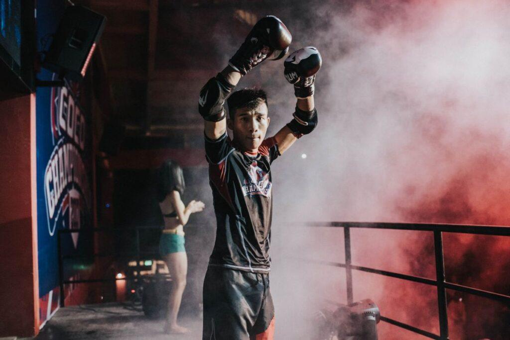 Boxer Gloves Up