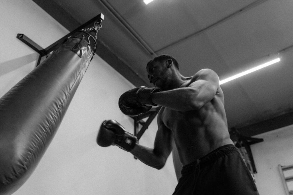 Boxer Punching Bag